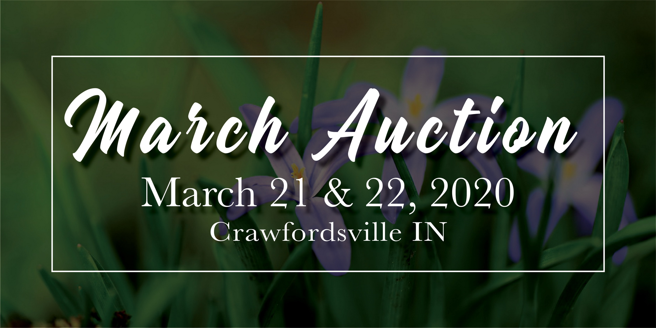 March 2020 Auction